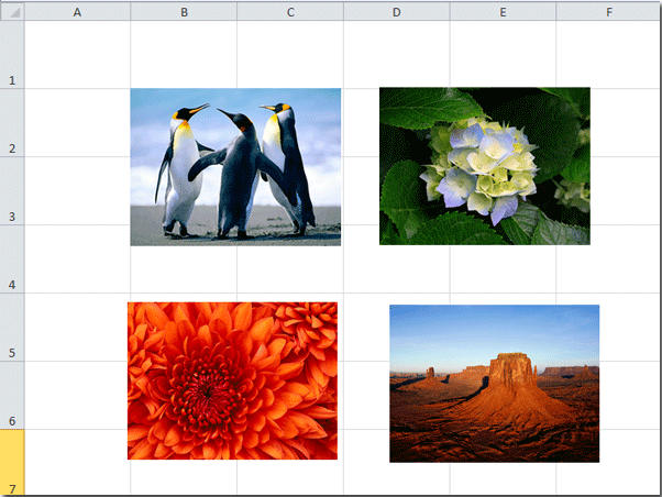 how to put a picture in a cell in excel